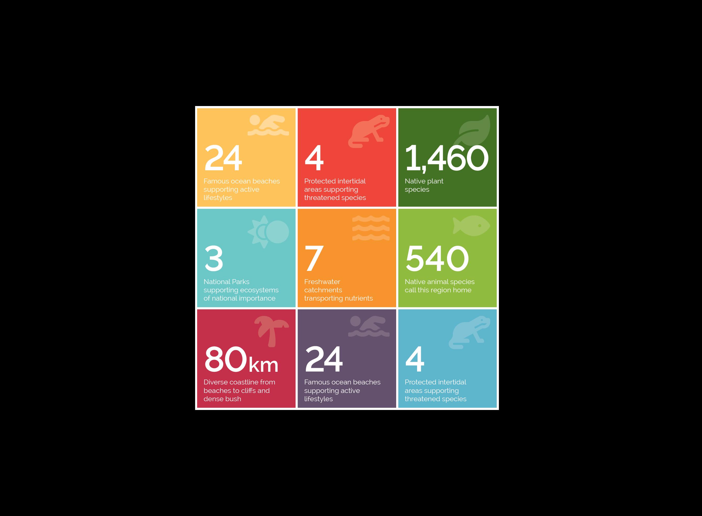 icon-infographic-graphic-designer
